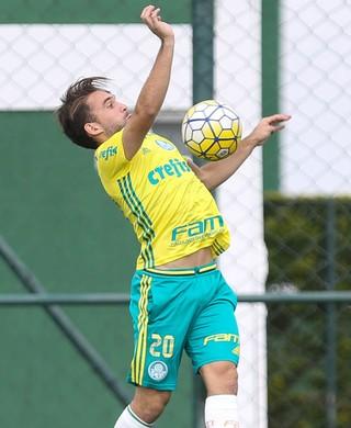 Allione Treino Palmeiras (Foto: Cesar Greco/Ag Palmeiras/Divulgação)