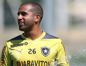Julio Cesar Botafogo treino (Foto: Satiro Sodré / SSPress)