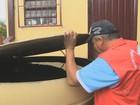 Cidades do RS vão multar quem não ajudar no combate ao Aedes aegypti