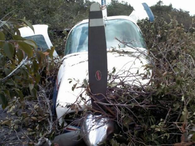 Avião teria caído por falha no motor, de acordo com o piloto (Foto: Divulgação/GTA)