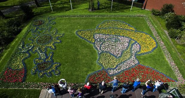 Jardim de flores exibe dezenas de tulipas formando o retrato de Van Gogh (Foto: Remko de Waal/ANP/AFP)