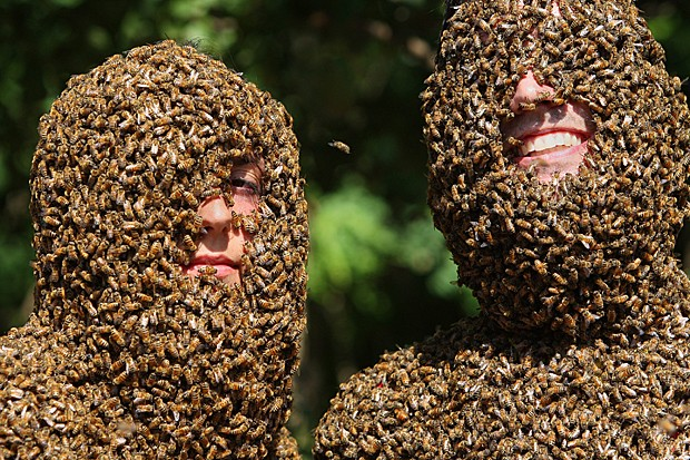 """Competição anual de """"barba de abelhas"""" em fazenda da cidade de Aulmer, província de Ontário, no Canadá, mostra dois participantes, Marenda Schipper e Patrick Boelsterli (Foto: The Canadian Press/Dave Chidley/AP)"""