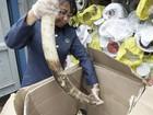 Carga de marfim avaliada em  R$ 1,3 milhão é apreendida na Malásia