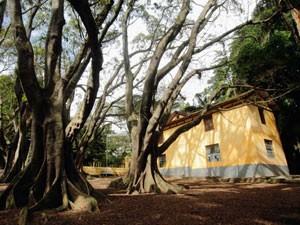 Segundo promotor, obras foram feitas sem autorização no Parque da Água Branca (Foto: Ardilhes Moreira/G1)