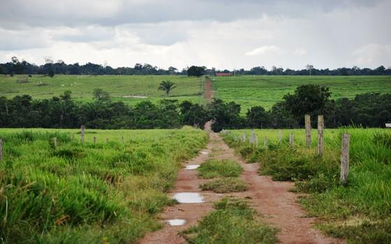 Terras na Amazônia (Foto: Brenda Britto)