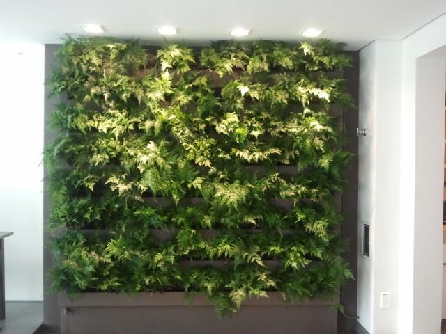 G1 Quadro Verde Veja Como Montar Um Jardim Vertical Em