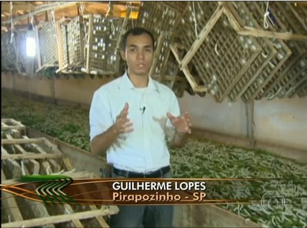 Guilherme Lopes em reportagem sobre o bicho da seda
