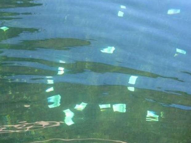 Ainda não se sabe a origem do dinheiro (Foto: Policia de Viena)