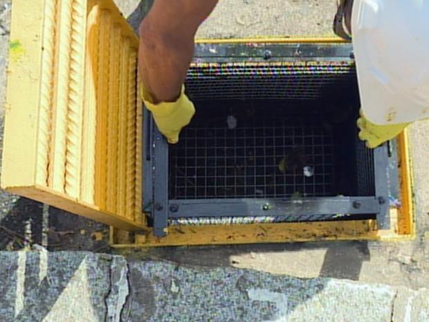 Novos bueiros com filtros são instalados para evitar alagamentos em Poços de Caldas (Foto: Reprodução EPTV)