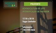 Veja a agenda rural no Oeste Paulista