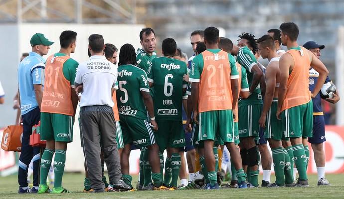 Palmeiras Elenco (Foto: Cesar Greco/Ag Palmeiras/Divulgação)