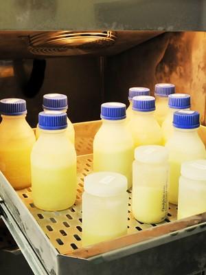 Estoque do banco de leite em Campinas tem déficit de 38% (Foto: Carlos Bassan / PMC)