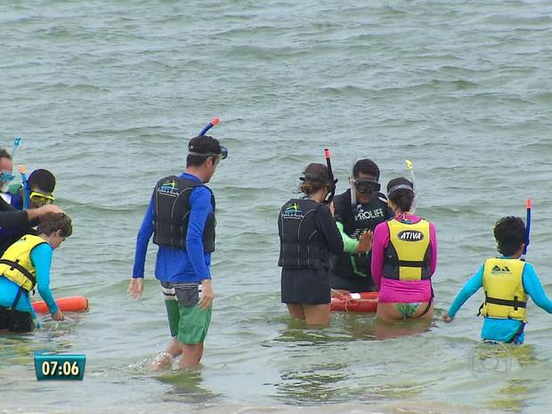 Turistas voltam ao mar em Noronha após ataque de tubarão (Foto: Reprodução/TV Globo)
