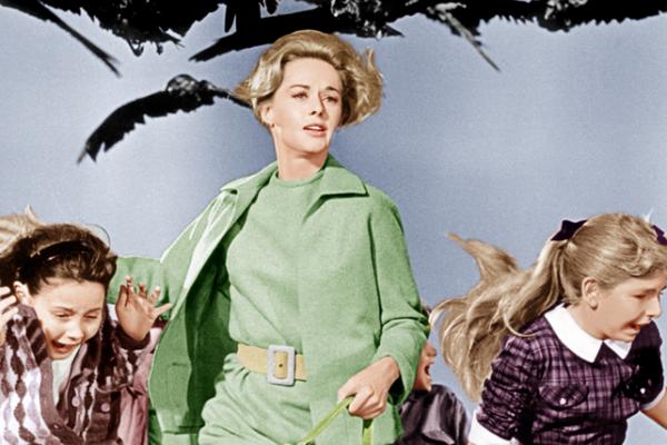'Os Pássaros' (1963) (Foto: Divulgação)