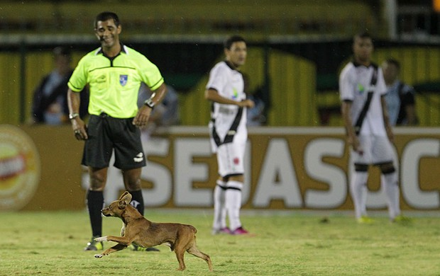 Cachorro Vasco x Resende (Foto: Marcelo Sadio / Site Oficial do vasco)