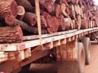Empresa é multada em R$ 11 mil por carga de madeira ilegal em MS