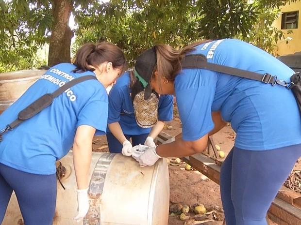Agentes de saúde fiscalizam propriedades rurais em Catiguá (Foto: Reprodução/TV TEM)