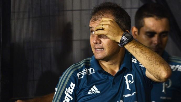Eduardo Baptista Palmeiras (Foto: Marcos Ribolli)