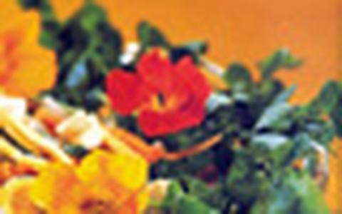Aprenda a fazer pratos com flores comestíveis