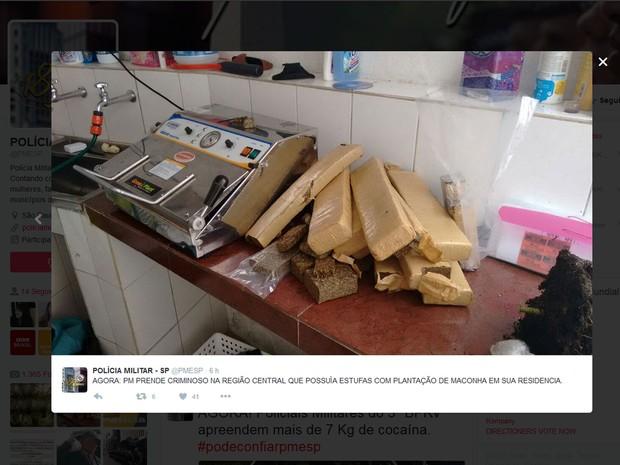 Homem foi preso com 34 tijolos de maconha e 16 mudas da droga em casa, em SP (Foto: Reprodução: Twitter/pmesp)