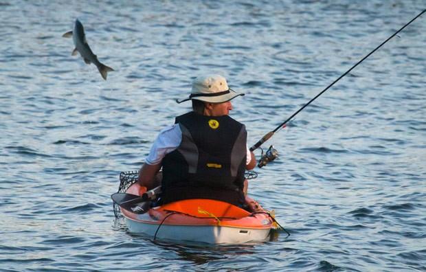Salmão saltou fora da água perto de onde homem pescava (Foto: Darryl Dyck/The Canadian Press/AP)