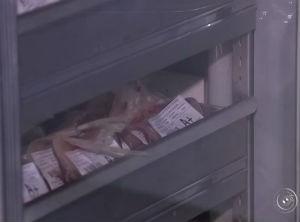 Estoques de sangue estão abaixo do esperado para esta época do ano (Foto: Reprodução/TV TEM)