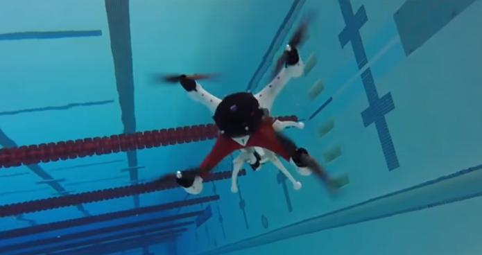 Novo drome mergula na água e volta a voar rapidamente (Foto: Divulgação/Universidade de Oakland)