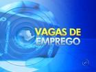 Veja as vagas de emprego desta 2ª feira na região de Rio Preto