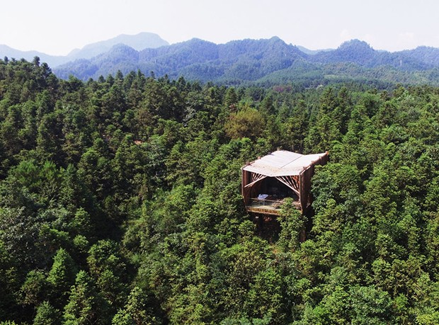 Localizada junto às copas das árvores no parque nacional Monte Qiyun (Foto: Bowen hou/Divulgação)