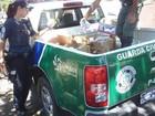 Guarda apreende 80 kg de alimentos vencidos em mercado de Limeira, SP