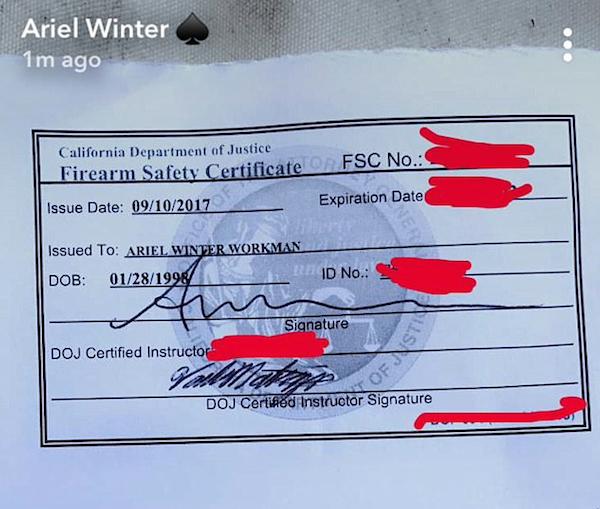 O documento que autoriza o porte de armas a Ariel Winter (Foto: Instagram)