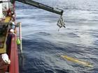 Busca submarina por avião da Malásia pode levar dois meses