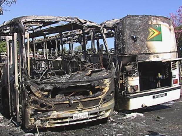 Veículos pertencem à prefeitura de Bauru e estavam no pátio (Foto: Cedida / Paulo Rocha)