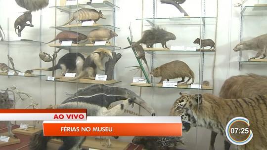 Museu de História Natural de Taubaté reabre com nova exposição