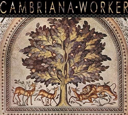 Foto (Foto: Capa do novo EP da banda Cambriana)