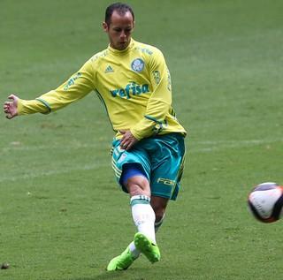 Alejandro Guerra Palmeiras (Foto: César Greco / Ag. Palmeiras / Divulgação)