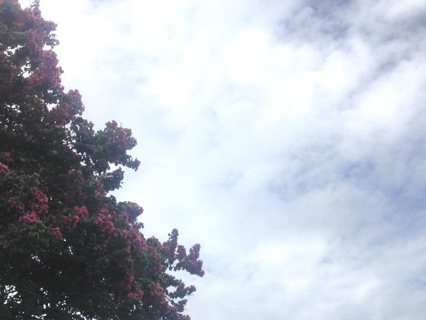 Inmet prevê tempo nublado e chuvoso para todo o Mato Grosso do Sul nesta segunda-feira (Foto: Anderson Viegas/Do G1 MS)