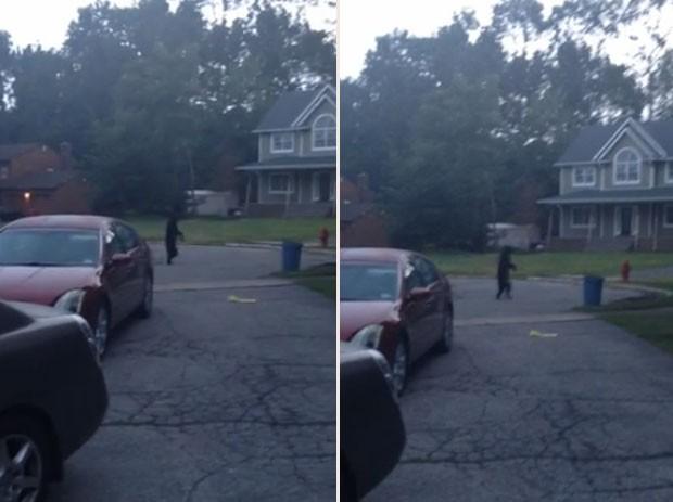 Vídeo que mostra um urso caminhando em pé faz sucesso na internet (Foto: Reprodução/YouTube/ Ian Bohman)