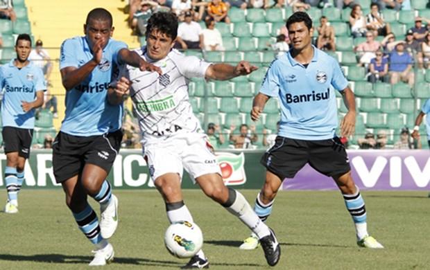 Aloisio e Naldo, Figueirense e Grêmio (Foto: Luiz Henrique, divulgação / FFC)