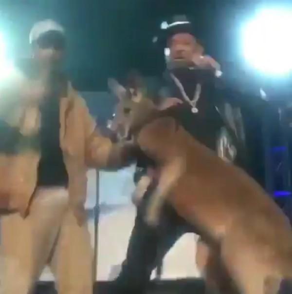 O ator Mike Epp com um canguru no palco de seu show (Foto: Reprodução)