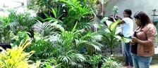 Grupo de mulheres montam floricultura (Reprodução/Rede Amazônica Acre)