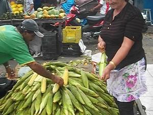 Mão de milho é vendida por até R$ 30 em Campina Grande (Foto: Rafael Melo/G1)