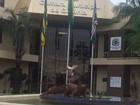Câmara coloca estátua de jacaré na entrada e divide opiniões, em Goiânia