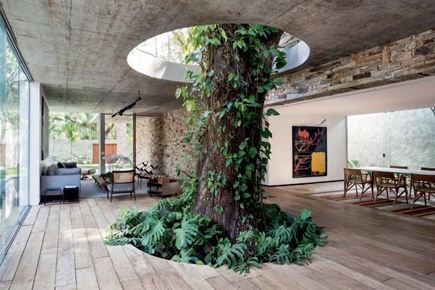 Jardim interno (Foto: Filippo Bamberghi)