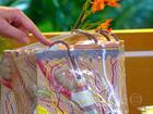 Conheça as propriedades medicinais da lavanda, prímula e camomila