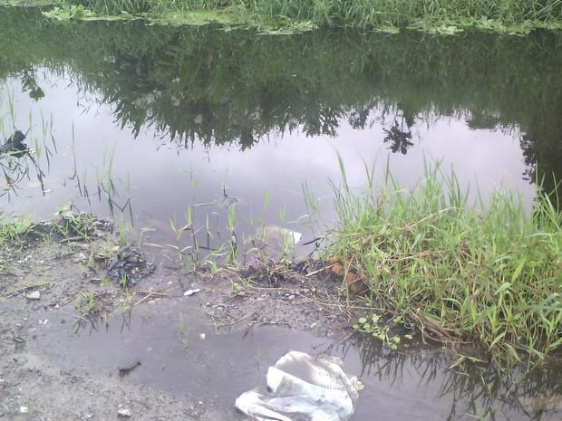Água se acumula em diversos trechos da via em Mongaguá (Foto:  Francinny Sousa e Silva/Arquivo Pessoal)