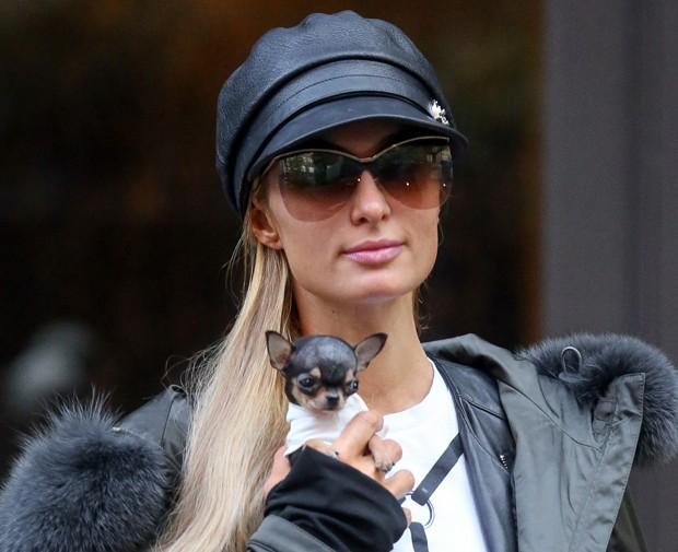 Paris Hilton e cachorrinho (Foto: AKM-GSI)