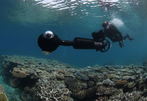 Google usa câmera submarina para levar imagens de corais para o serviço de mapas da empresa (Foto: BBC)