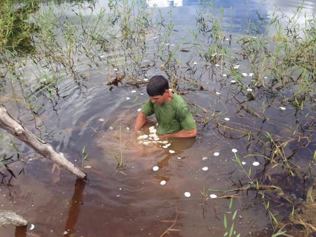 Hóstias foram encontradas dentro de rio em Pinheiros, no Espírito Santo (Foto: Juscimar da Silva Pereira/ Leitor A Gazeta)