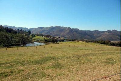 fazenda-bela-vista-leilão (Foto: Divulgação)